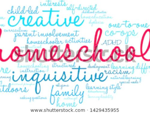HOME SCHOOL ADVICE FROM THIS TEACHER!